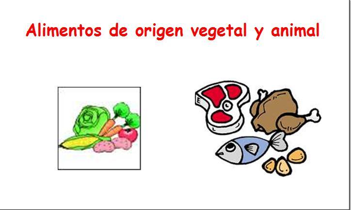 Imágenes para colorear de alimentos de origen animal y vegetal