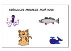 Mis animales | Recurso educativo 36479