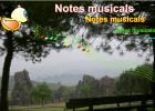 Notes musicals | Recurso educativo 42298