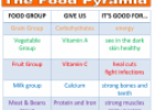 The food pyramid | Recurso educativo 75108